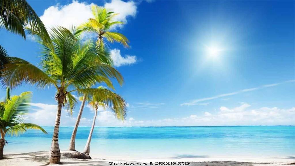 清新夏季海边沙滩椰子树,海滩 清凉夏季 夏季背景 -图