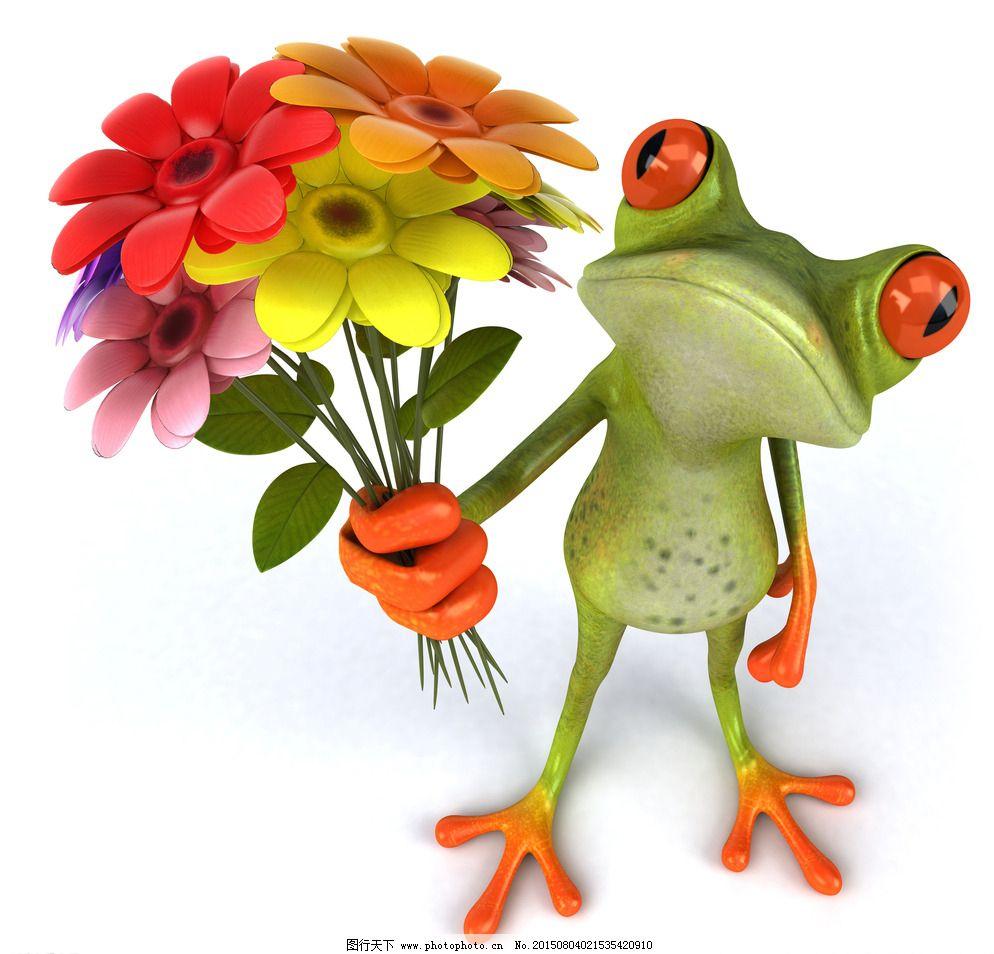 3d青蛙图片