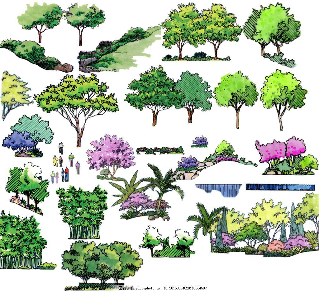 手绘园林植物