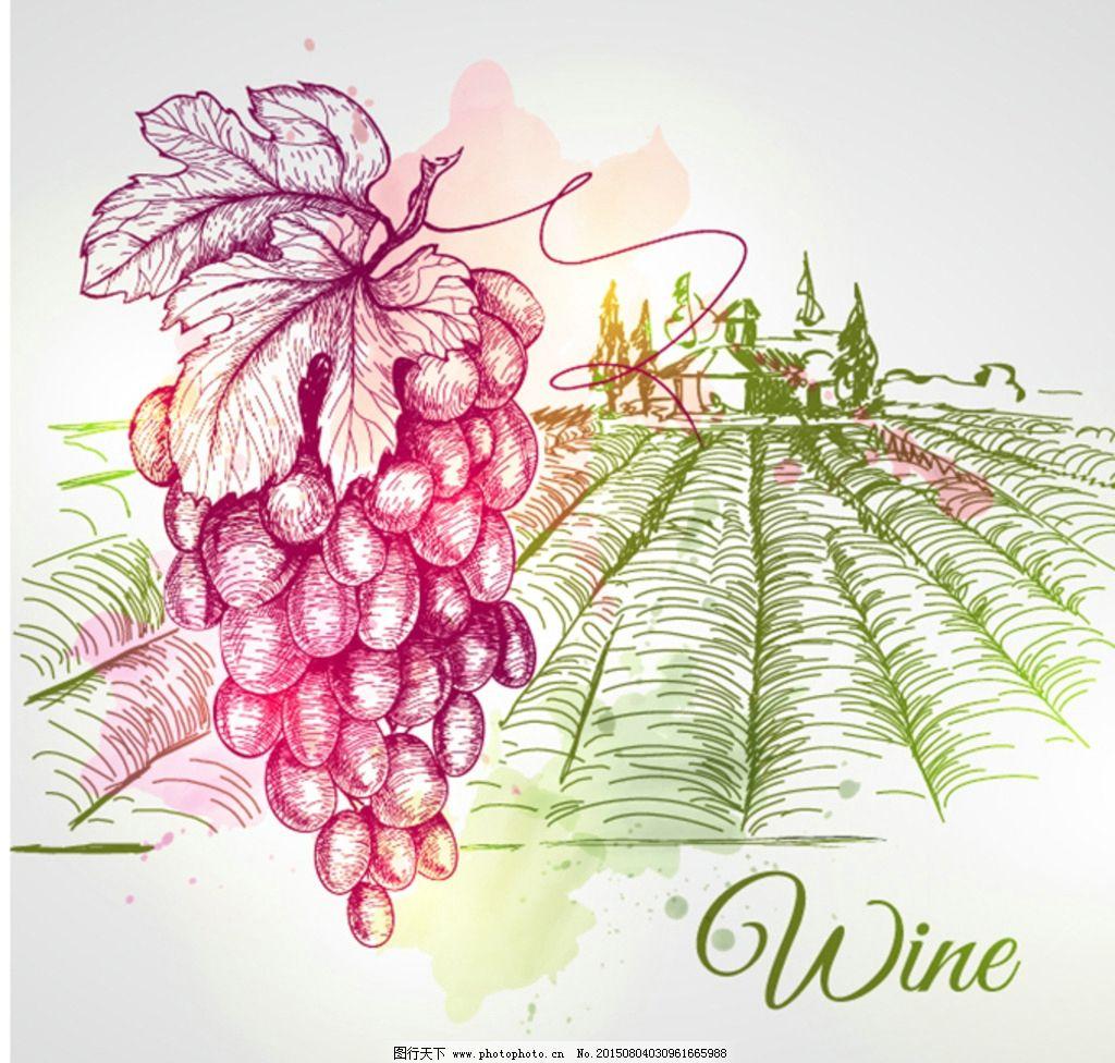 葡萄酒庄园手绘图片