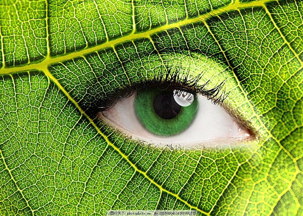 眼睛怎么画好看动物