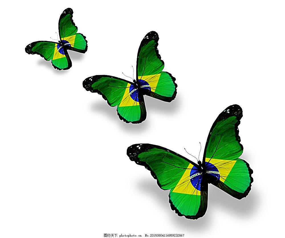 巴西国旗蝴蝶 美丽蝴蝶 蝴蝶标本 动物标本 动物世界 昆虫世界