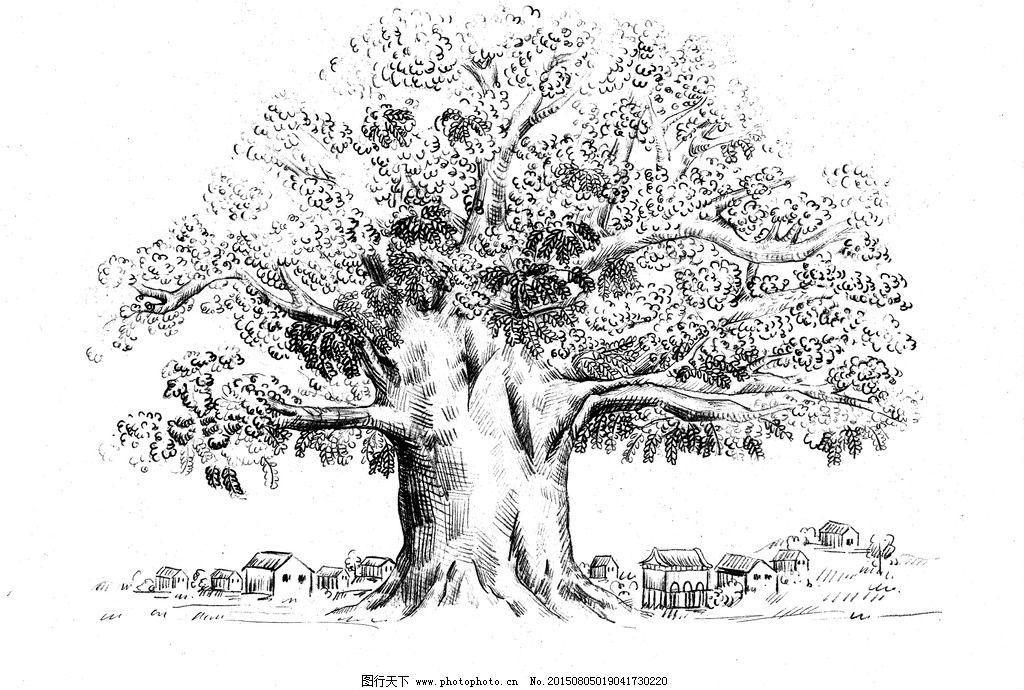 老槐树 手绘 线稿 白描 速写 插画 植物 复古