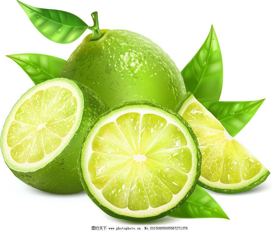 曲线 树叶 水果 线条 叶子 eps eps 矢量 曲线 线条 青色 柠檬 叶子