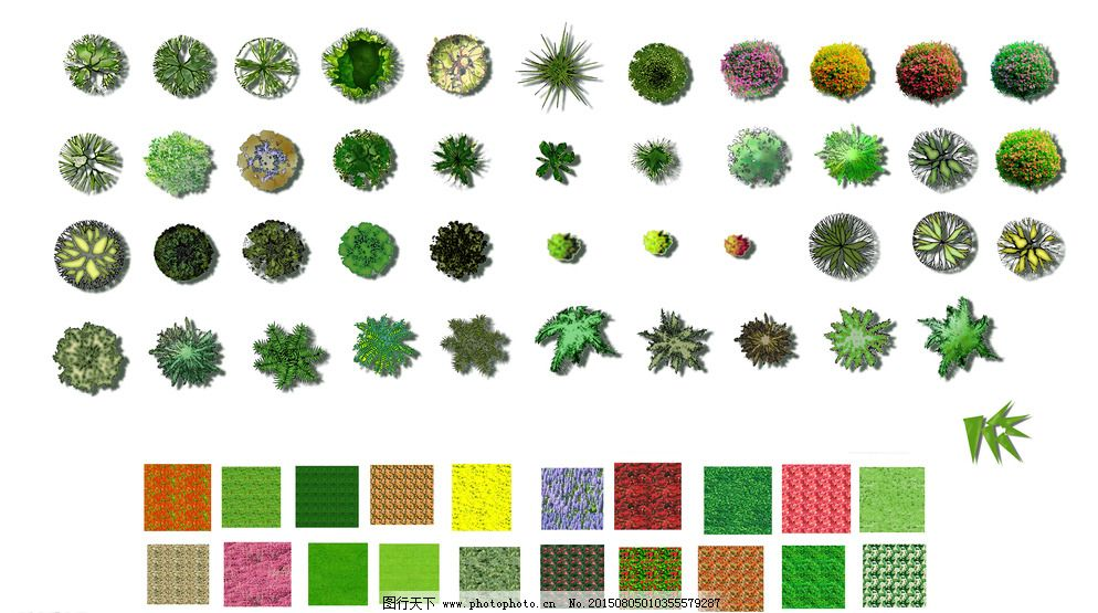 彩色植物平面图图片