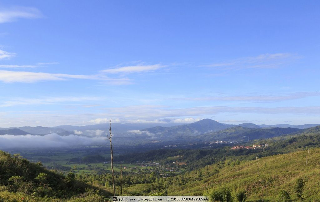 山脉 天空 山坡 草地 绿色 草原 蓝天 白云 森林 新疆 高山 蓝天白云
