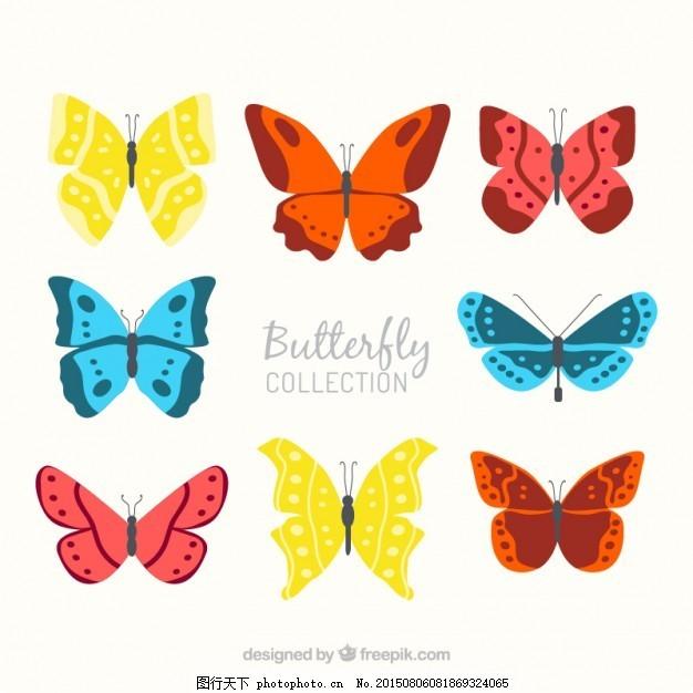 手画不同的蝴蝶 自然 动物 手绘 色彩 绘画 装饰 飞 观赏 套