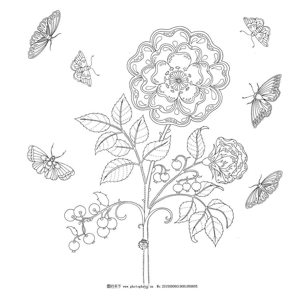 手绘 涂色 探索 奇境 绘本 秘密 花 蝴蝶 设计 文化艺术 绘画书法 599