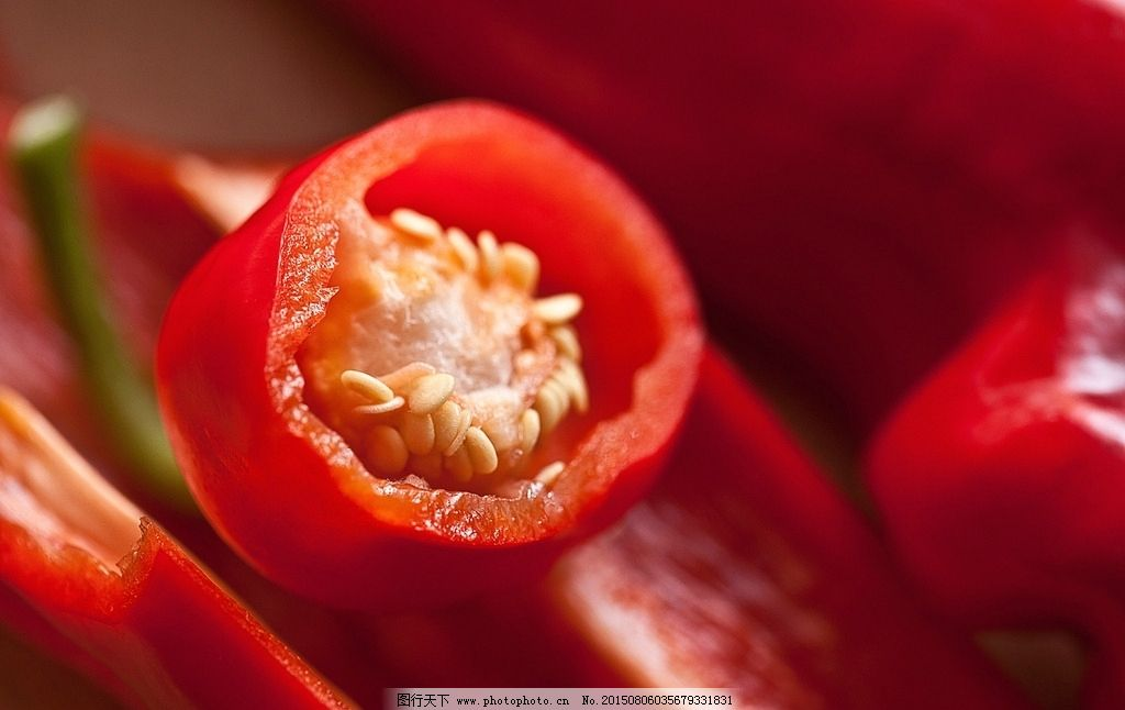 辣椒胞间连丝 手绘图
