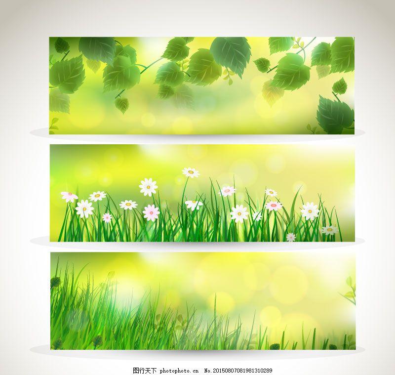 绿色植物banner