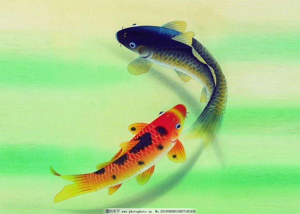 锦鲤 古典锦鲤 中国风 鲤鱼 池鱼