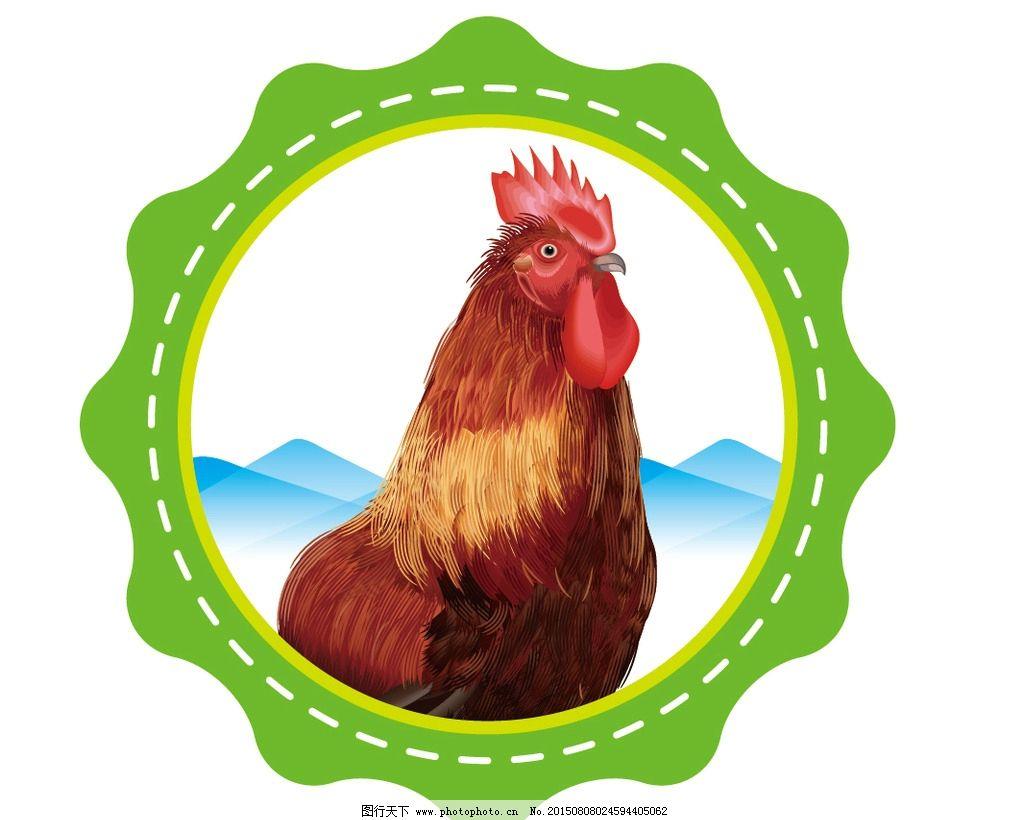 矢量公鸡 手绘矢量公鸡 卡通公鸡 手绘鸡 卡通鸡