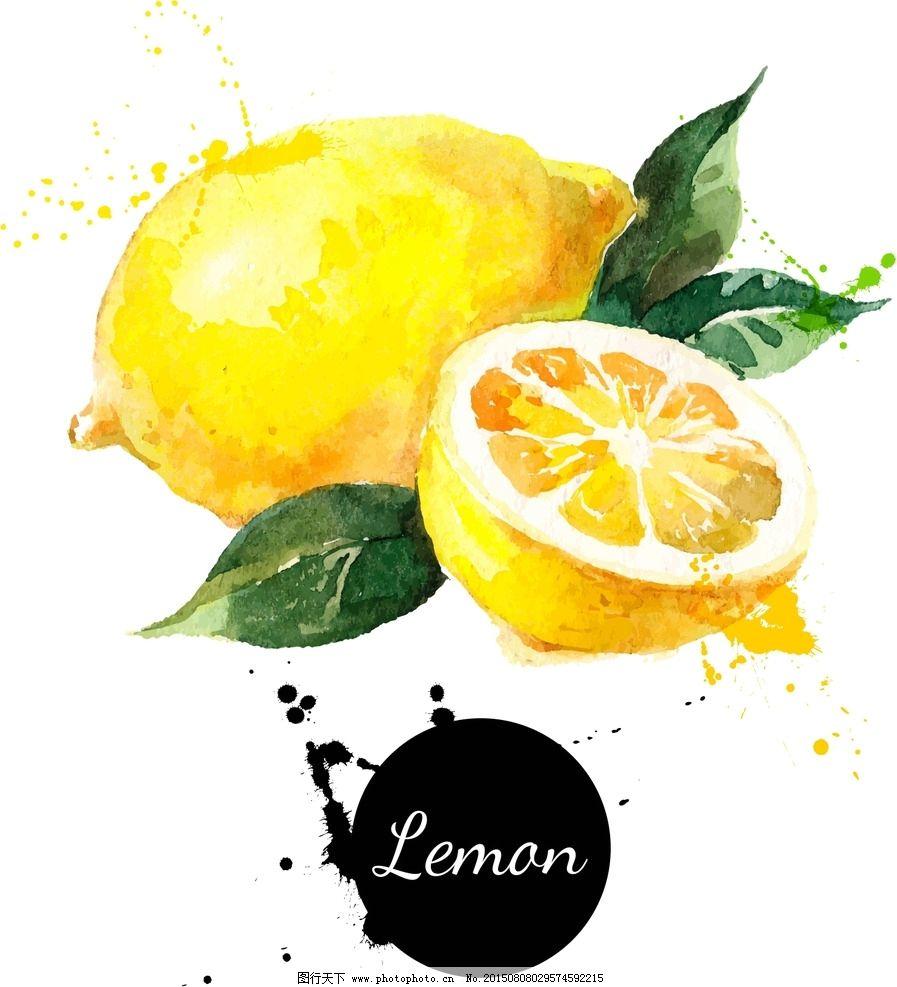 柠檬,手绘,水果,矢量图图片