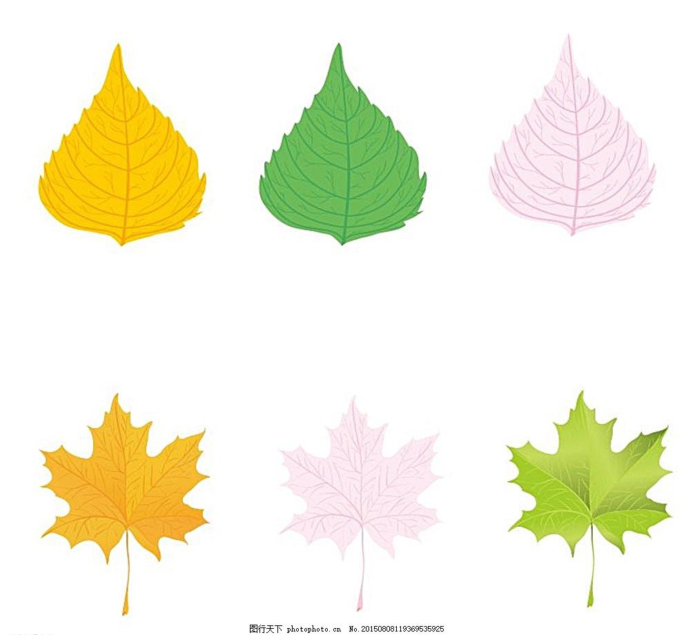 多彩树叶 树叶 多彩 叶子 彩色 枫叶 圆叶子 设计 广告设计 ai 白色