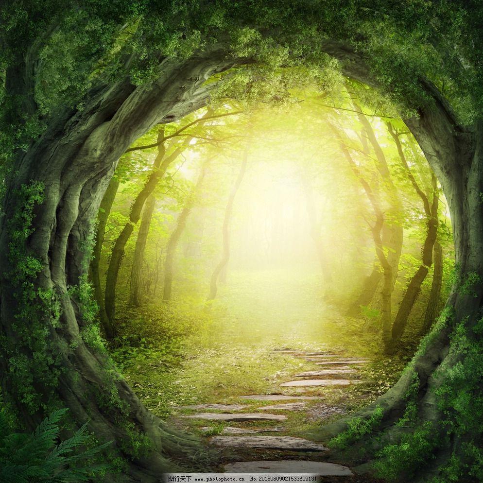 童话 温馨 森林