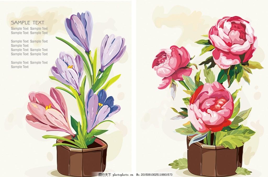 兰花玫瑰月季手绘矢量花卉