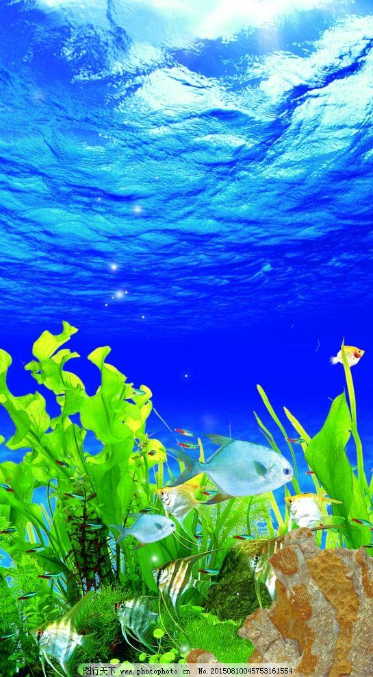 海底世界 鱼缸造景 唯美 海底生物 海底素材 生物世界 海洋生物