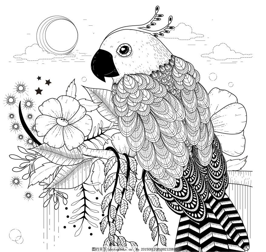 黑白手绘鹦鹉插画 白描 动物 花朵 植物