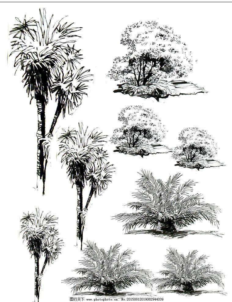 手绘设计 园林植物 线稿 黑白 画 设计手绘 设计 文化艺术 绘画书法