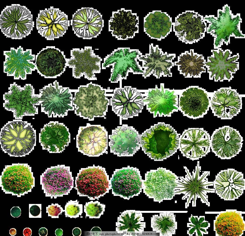 总平面 植物 图例 建筑 景观 设计 设计 自然景观 自然风光 72dpi psd