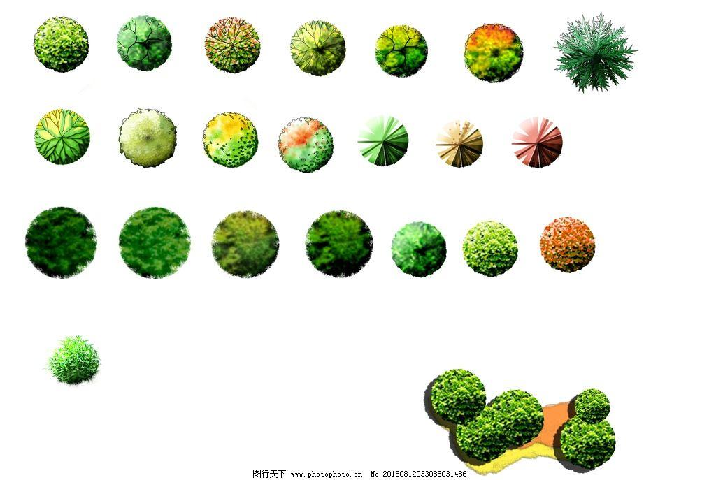 平面植物副本 形象 生动 惟妙惟肖 psd 设计 psd分层素材 psd分层素材图片
