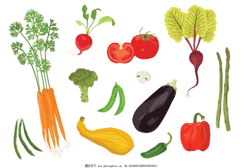 蔬菜设计图免费下载 ai 彩色 绿色 矢量图 矢量图 ai 彩色 绿色 其他