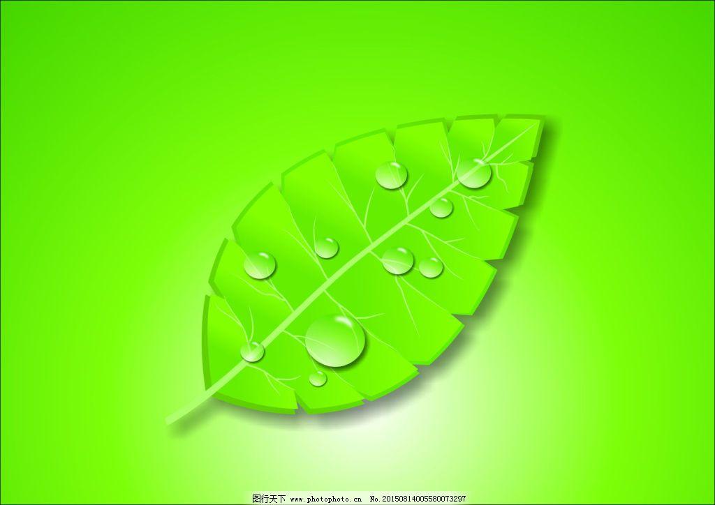手绘树叶免费下载 光效 树叶 水珠 树叶 水珠 光效 矢量图 其他矢量图