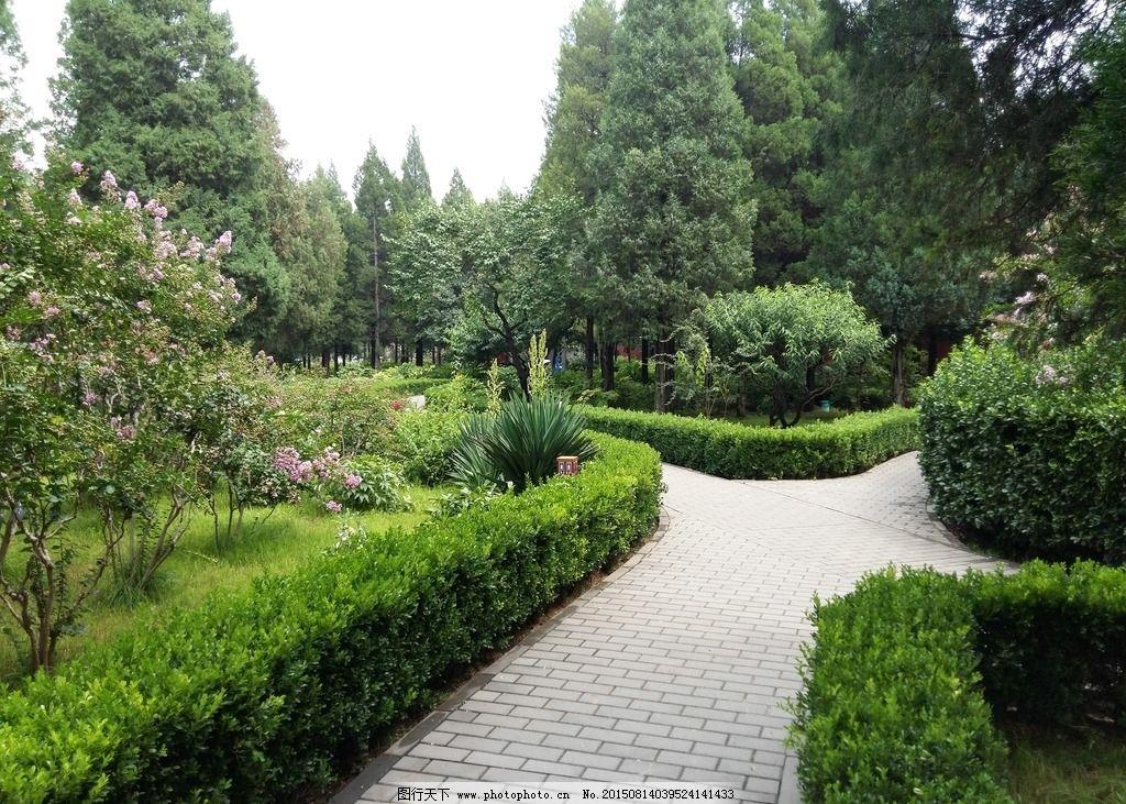 小区园林景观图片