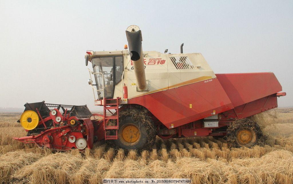 雷沃谷神收割机ge70_收割机 农机 雷沃谷神 雷沃 小麦收割机 麦地 丰收 收获 摄影 现代