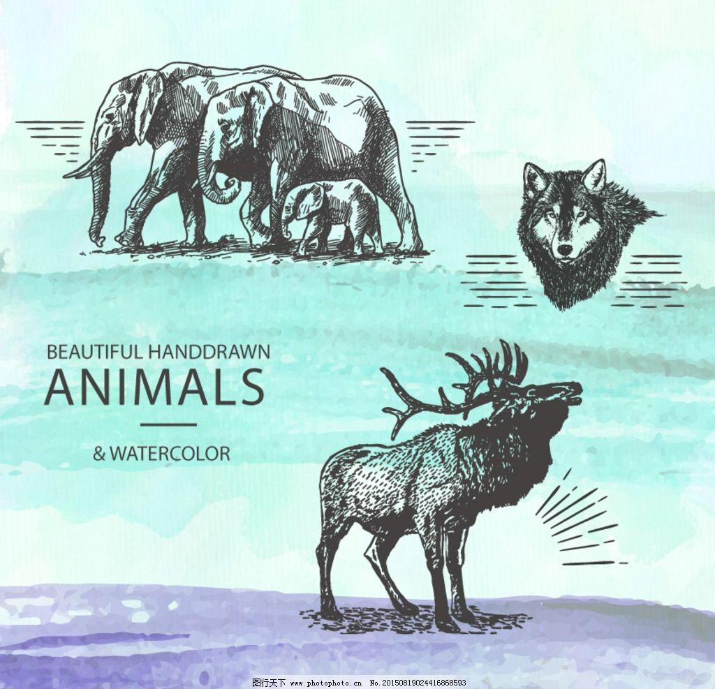 大象 手绘动物 麋鹿 狼 铅笔画 动物 非洲动物 动物园 简笔画 设计