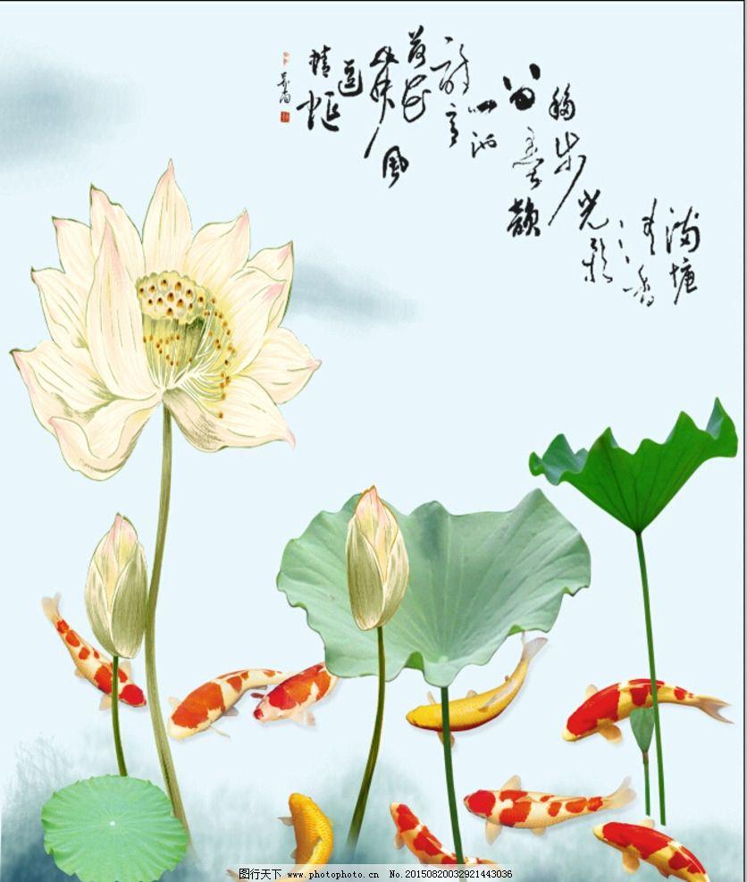 荷花锦鲤图片