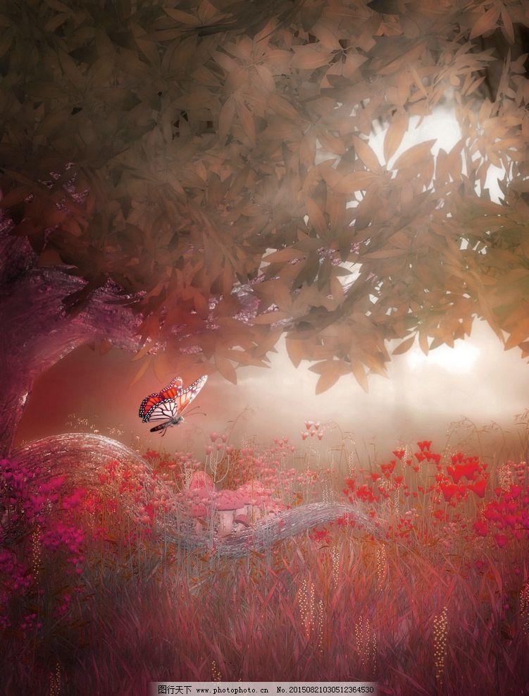 梦幻式背景图片,森林 梦幻森林 树藤 唯美哥特风格-图