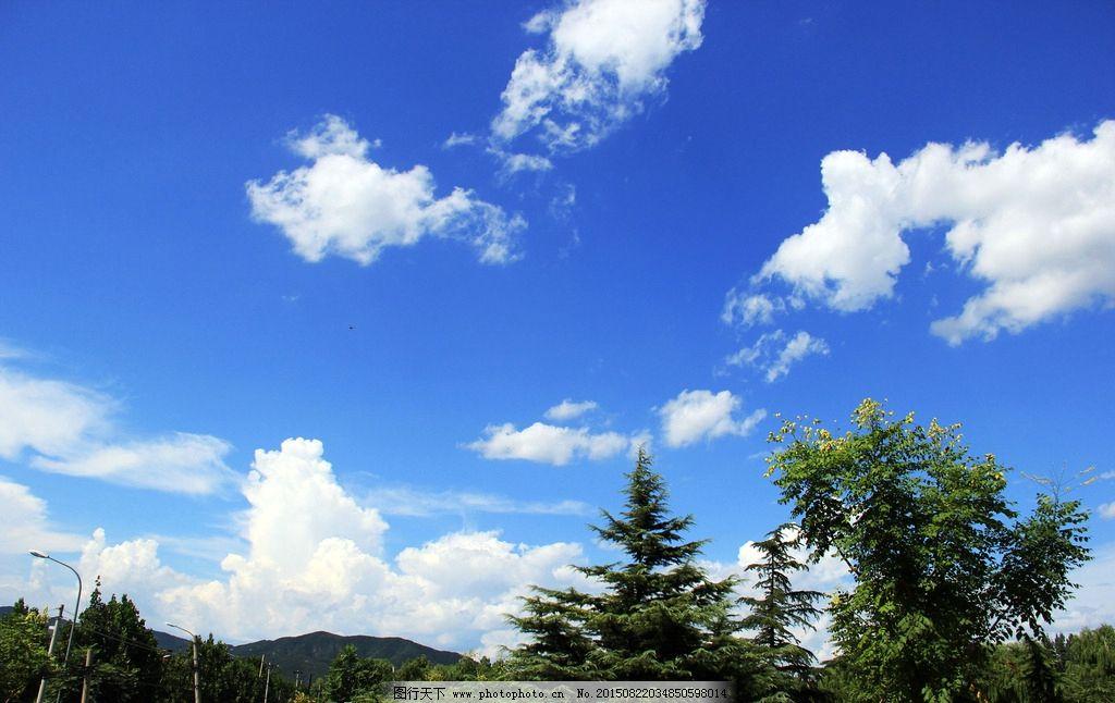 白云 树枝 蓝天 树林 绿叶 午后 阳光 摄影 自然景观 自然风景 72dpi