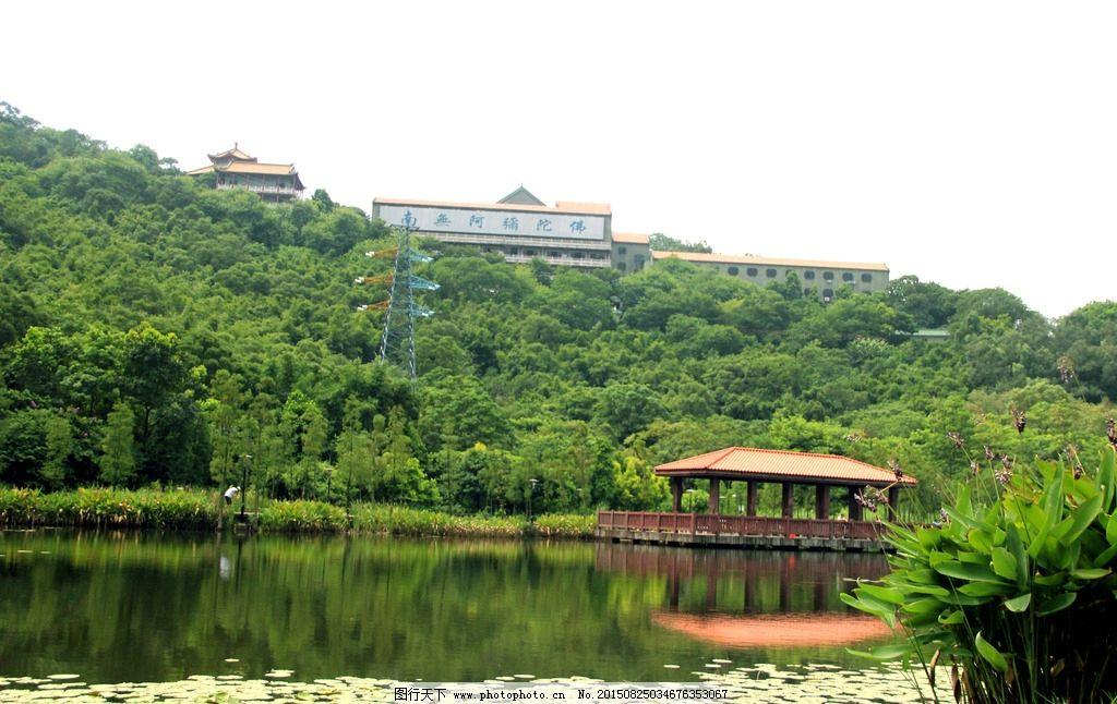 顺德风景 童话动物王国 顺峰山公园 佛山 景点 摄影