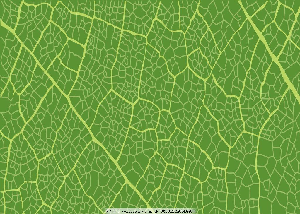 树叶纹理背景图片