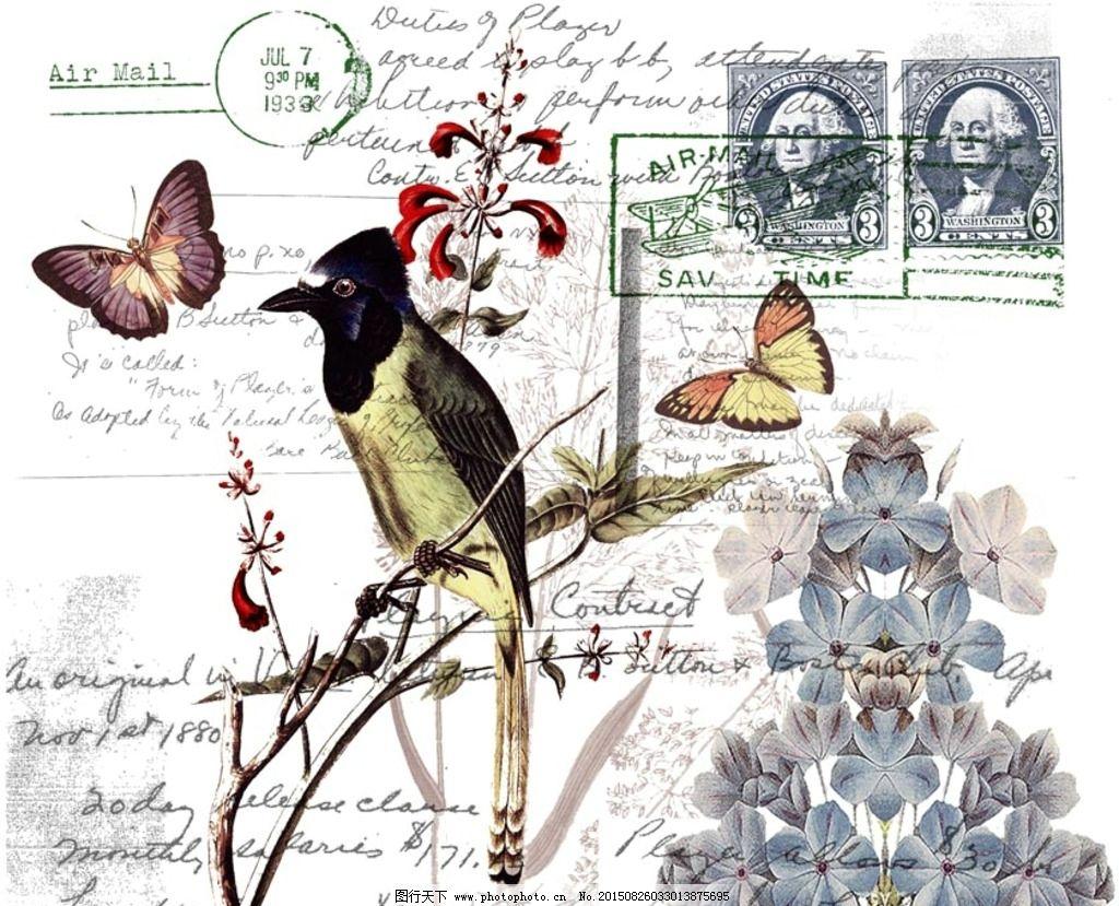 欧美素材  鸟