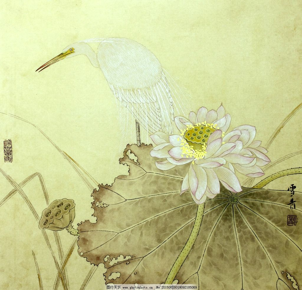 龚雪青高清花鸟工笔画图片
