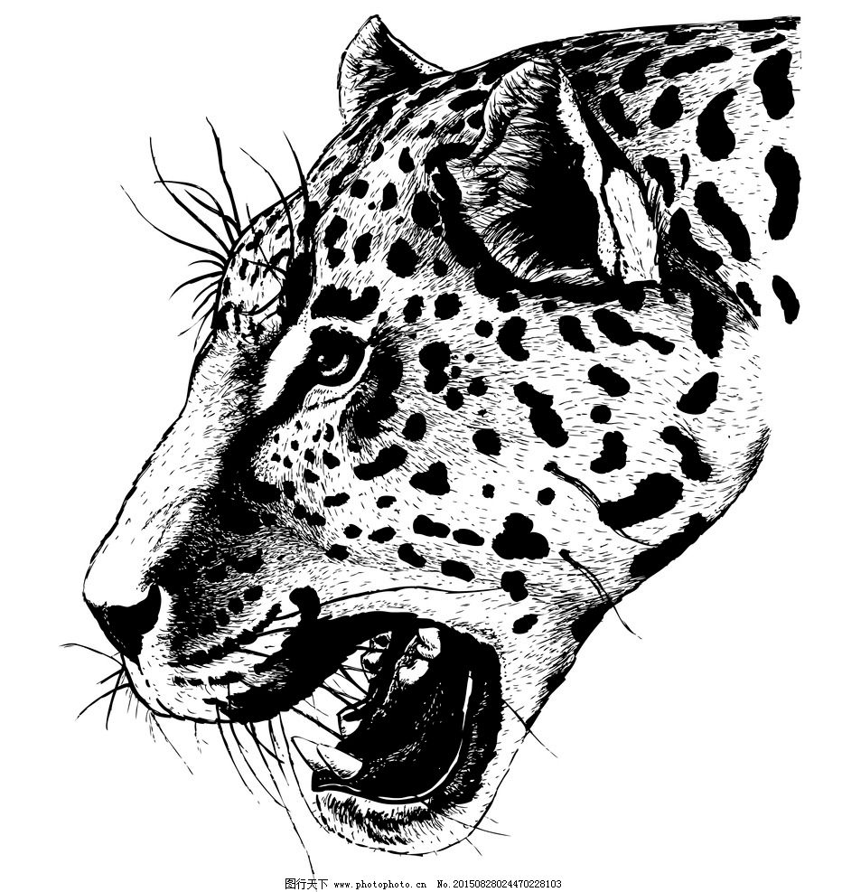 花豹 动物 生物世界 野生动物 矢量图库 豹 豹纹 矢量图 矢量动物