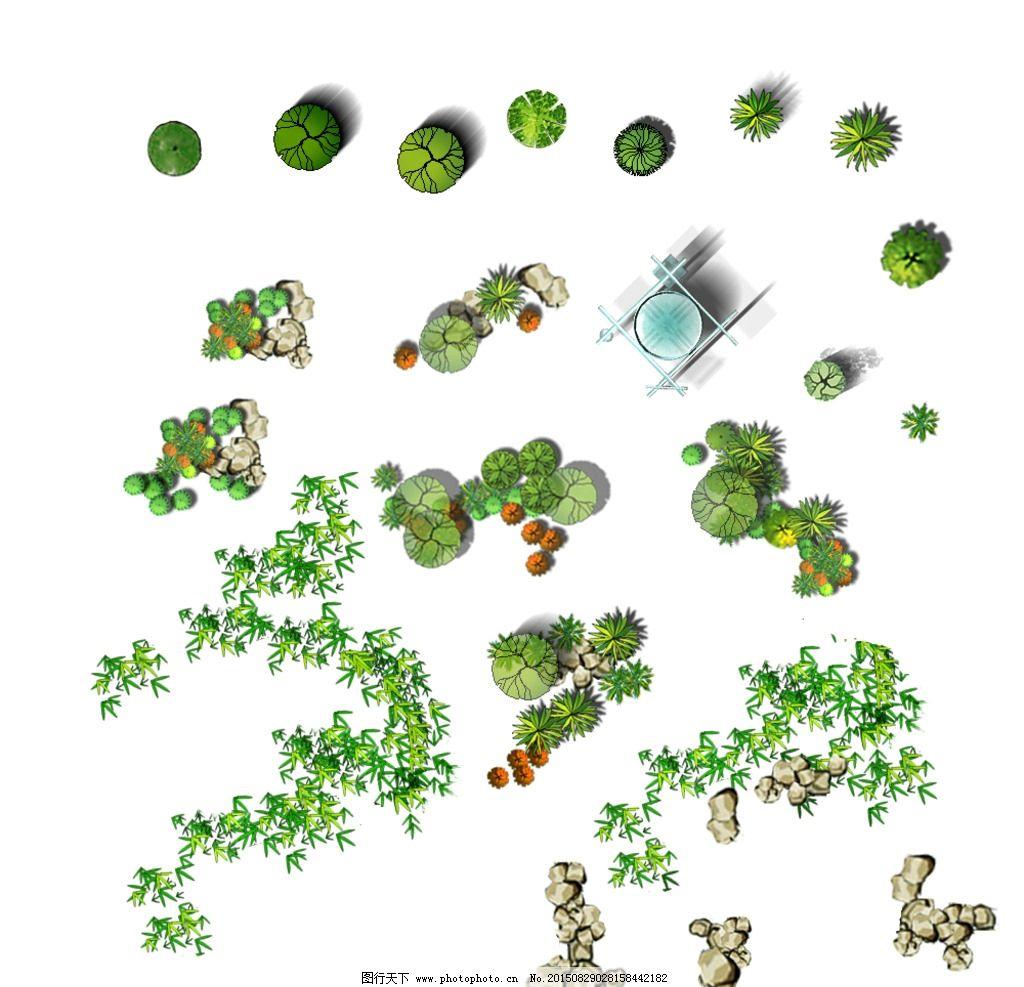 彩平 植物 素材 分层 合集 设计 环境设计 景观设计 72dpi psd