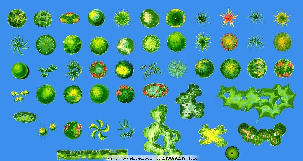 PS树的平面素材图片_景观设计_环境设计_图道路网绘制cad图片