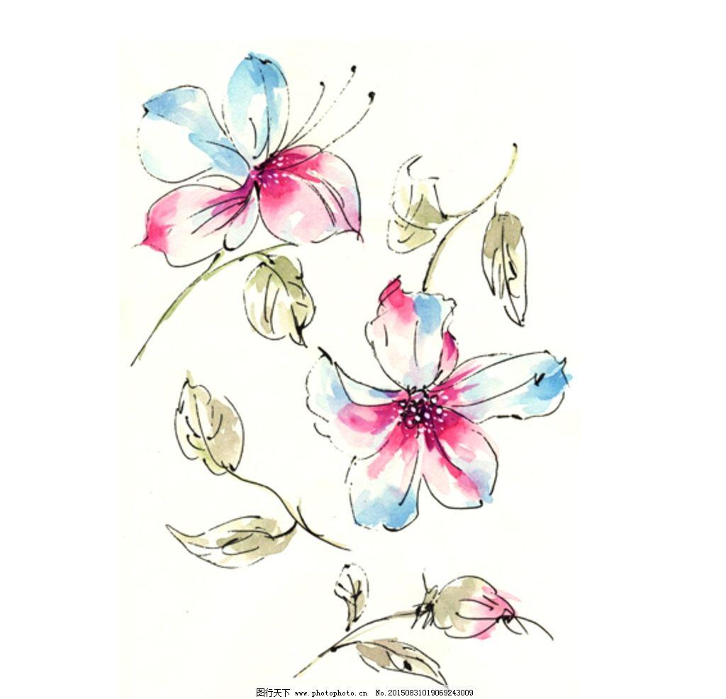 水彩 花卉 植物 手绘 高清