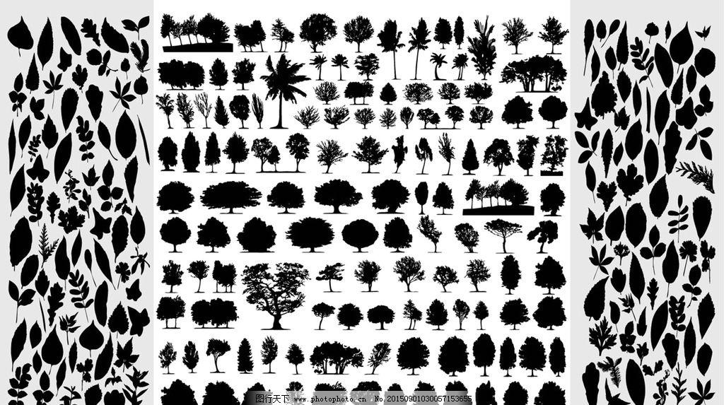 树木   树叶  剪影