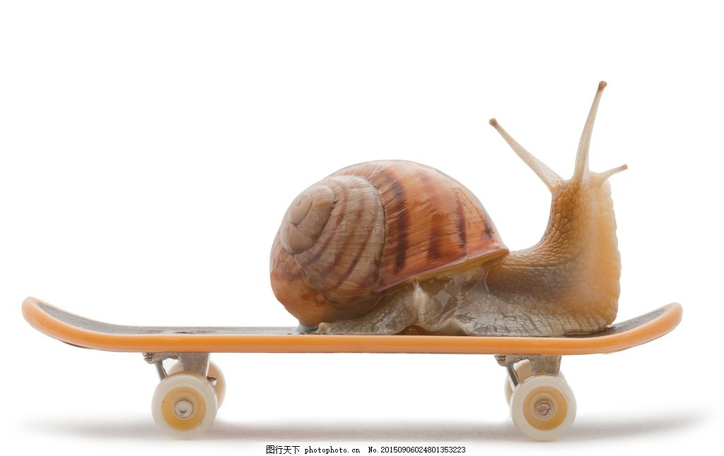 可爱蜗牛 唯美 炫酷 虫子 软体动物 小蜗牛 摄影