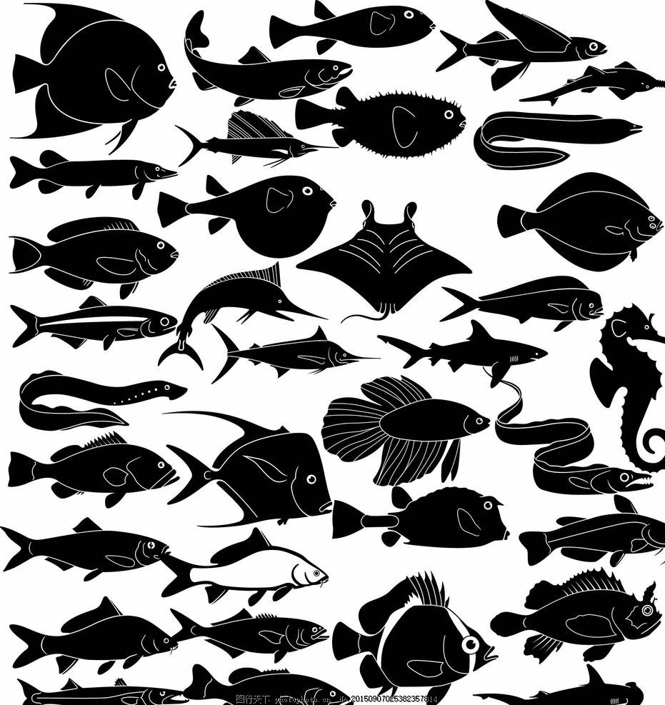 海洋动物剪影