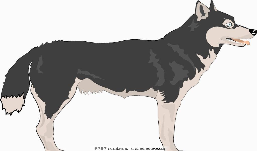 狼 凶猛 狗 动物 领袖 wolf 设计 生物世界 野生动物 cdr