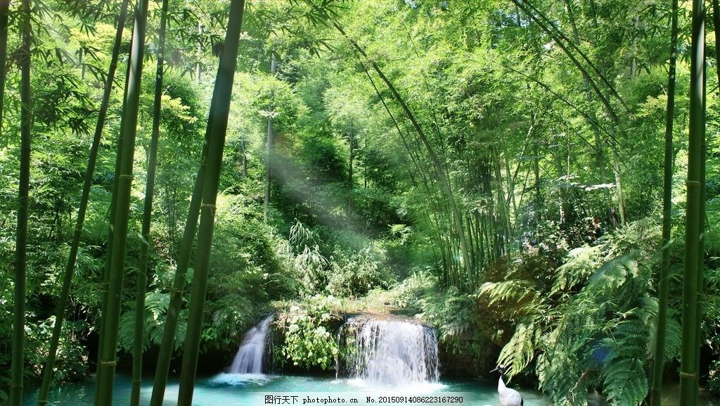 竹林山水风景