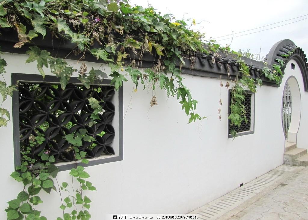 围墙· 绿植 扁豆 窗花 中式 摄影 建筑园林 园林建筑图片