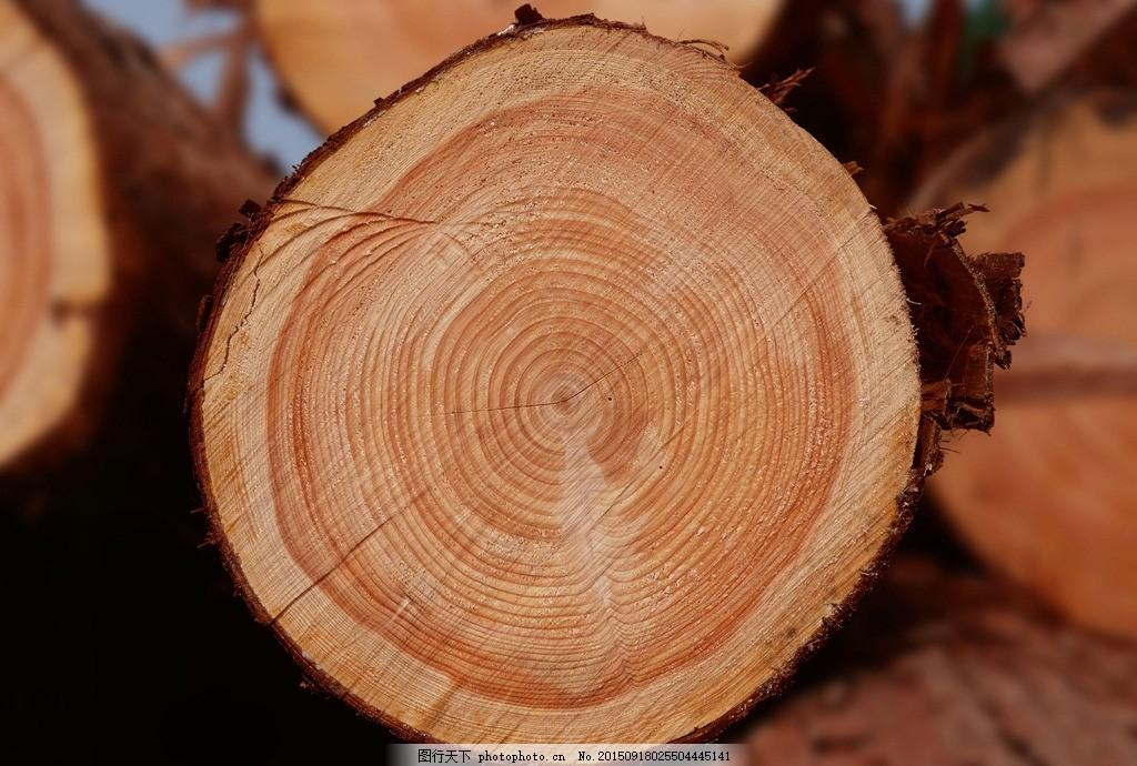 木板 木纹 木质 质感 纹理 摄影 生活素材