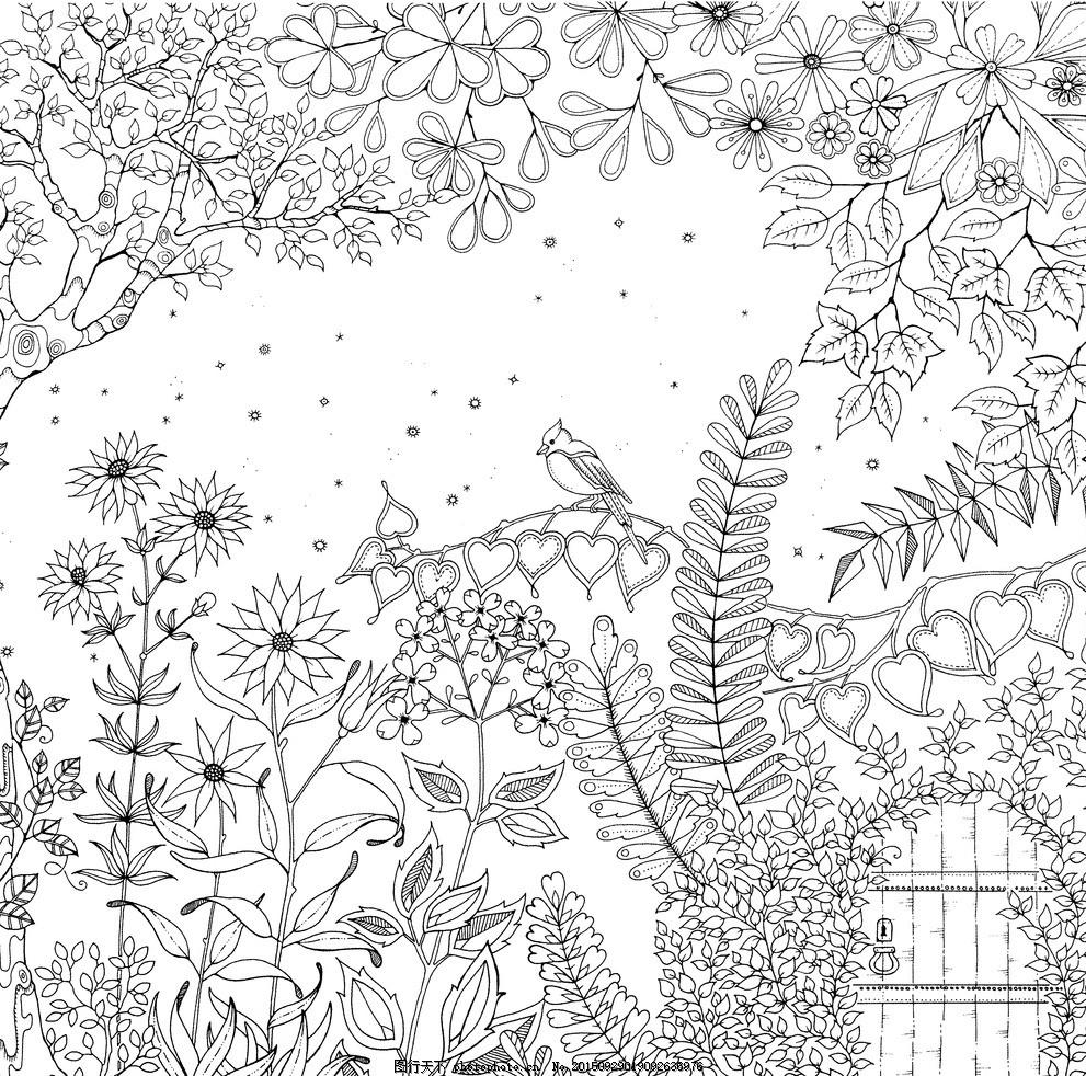 秘密花园 彩绘本