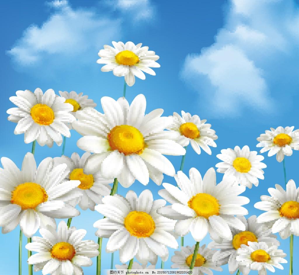 春天吊旗,宣传栏,海报,清新,广告,树叶,向日葵